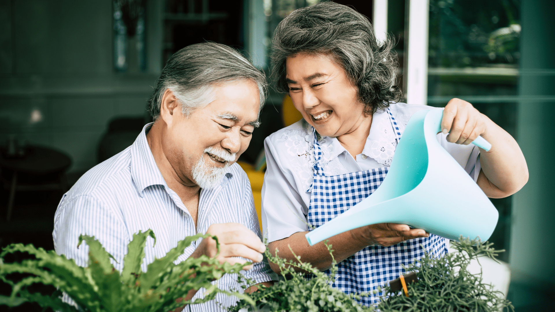 husband and wife watering flowers, using annuities for retirement savings